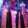 Цирковое танцевальное P Show