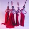 Танцовщица гоу-гоу Вероника Ф