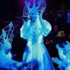 Танцовщица гоу-гоу Лида