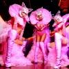 Танцовщицы гоу гоу в Москве
