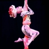 gogodance.ru-p-show-dance-and-circus-44